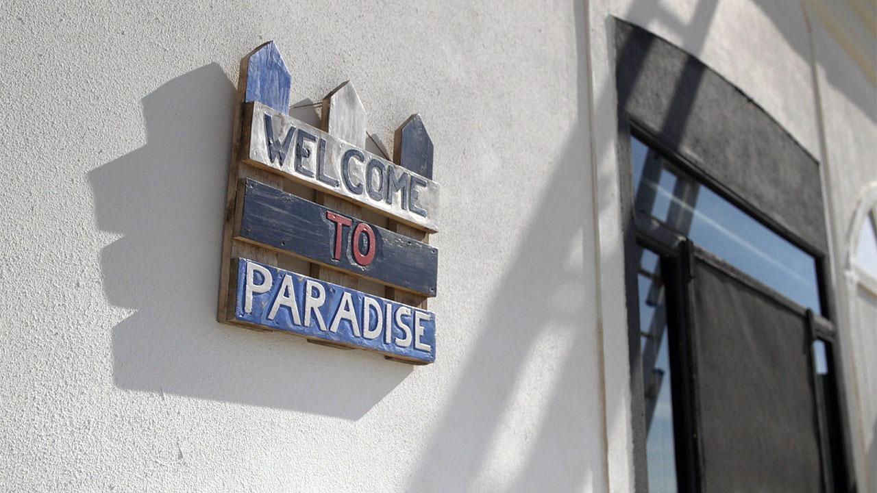 IV-David-Gine-paradise.jpg