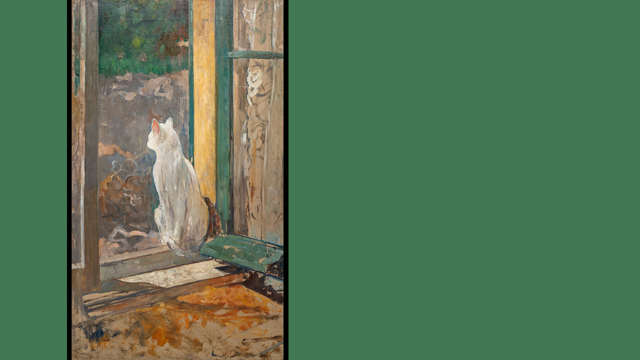Mag-het-ook-mooi-zijn-1280-Frans-Hals-Museum-Kat.jpg