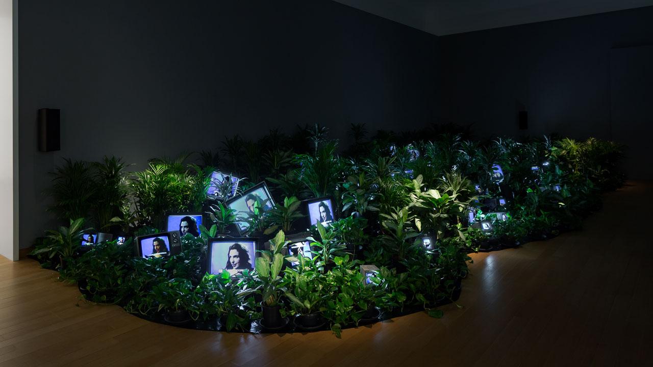 nam-june-paik---tv-garden.jpg
